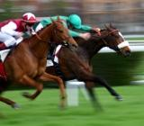 activities for group Paris, horse racing paris, Activites groupe Paris